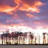 Dawns Fire