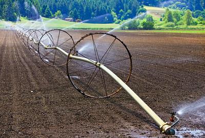 Mud Wheeling