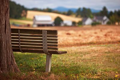 A Farmfield View