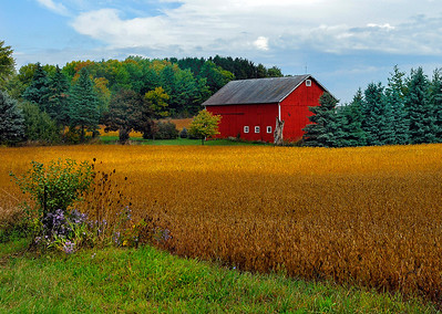 Red Barn | Racine County, WI