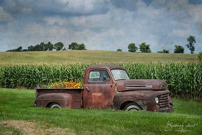 White - Konopacki Farm | Monroe, WI