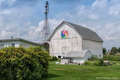 White & Konopacki Farm | Rainbow Blossom | Monroe, WI