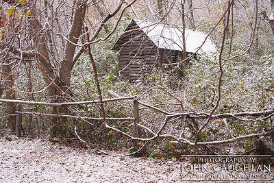 FallColors(snow1f)