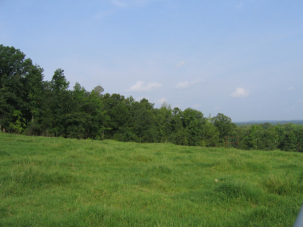 Looking out across East Texas woodlands from the family farm's high pastures (195_9504)