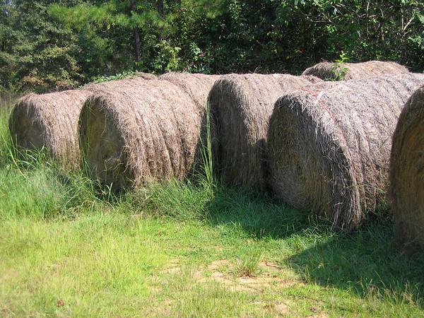 Hay bales at the family farm