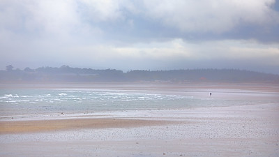 Walker on the Beach ( South Strand, Rush )-1L8A1167