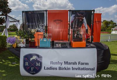Rushy Marsh-1