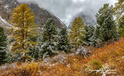 Autumn on Aktru