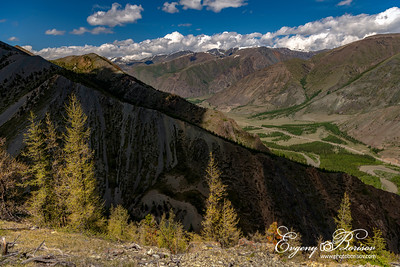 In the mountains of Altai