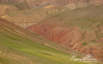 Landscape of Altai Mars