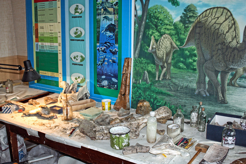 Paleontologists' workshop.