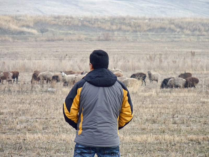 Azat looking out over the steppe landscape of his homeland.