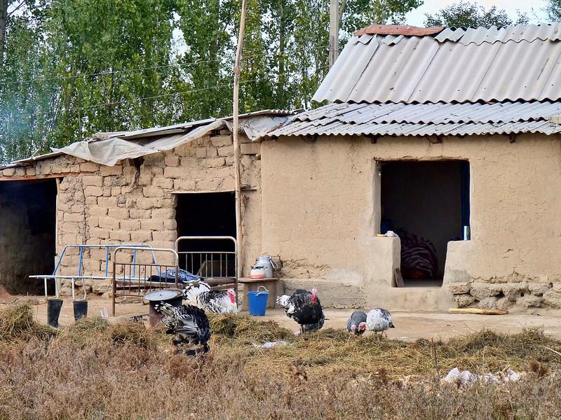 Village home. Деревня Мраморное, переселенцы с Юга построили жилище.