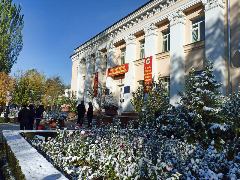 Flowers under snow at a polling station on the day of the Presidential election. На избирательном участке в день выборов.