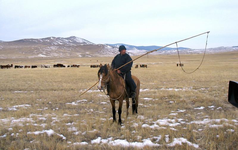 Buryat herder.