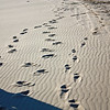 Footprints in the sands of Chara.