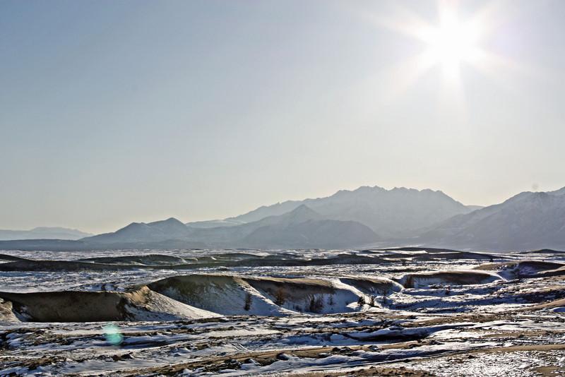 Starry desert sun.