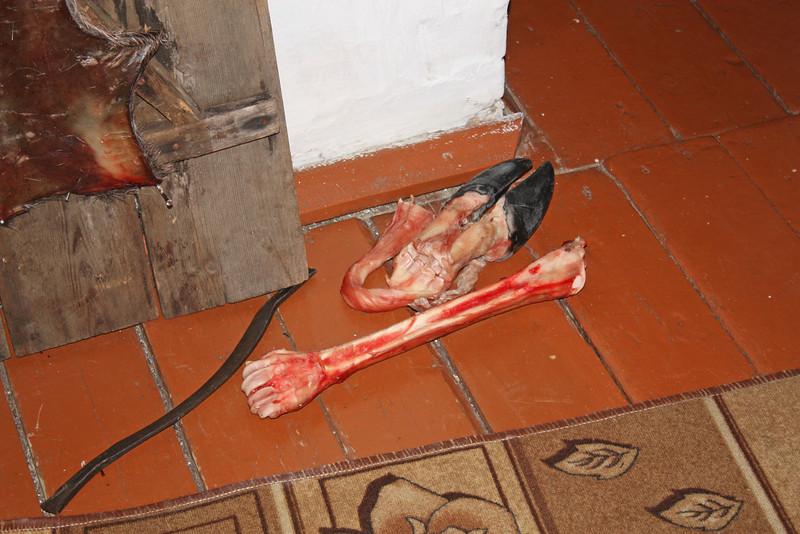 A hoof & a bone - nothing goes wasted. Оленьи ноги, с них берётся шерсть на унты.