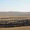Aginskoye farm.