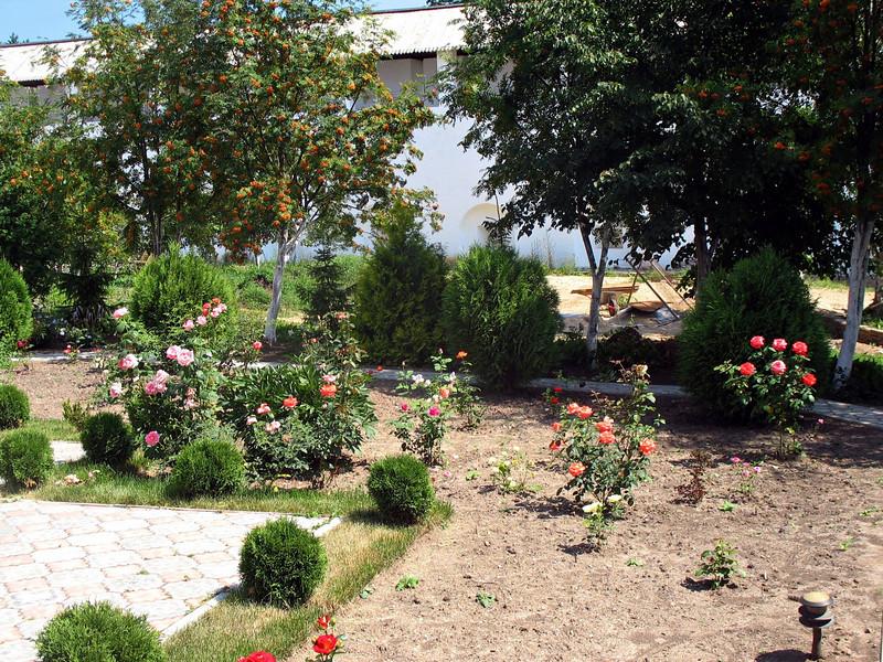 Monastery rose garden. (Borovsk)