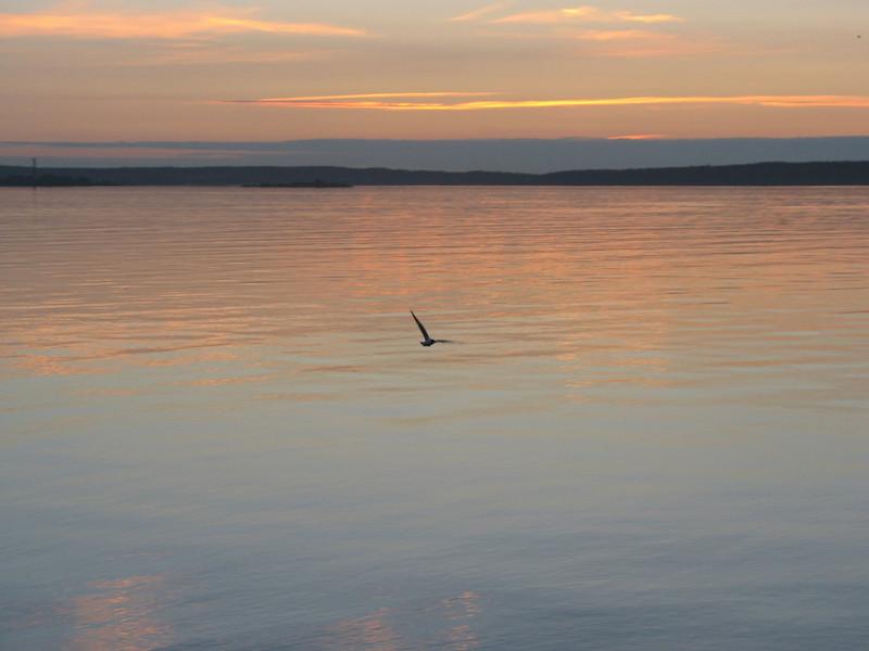 Soaring into the sunset over Lake Onega. (Karelia, Russia)