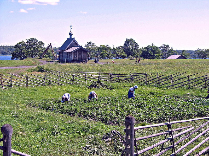 Working in the fields.