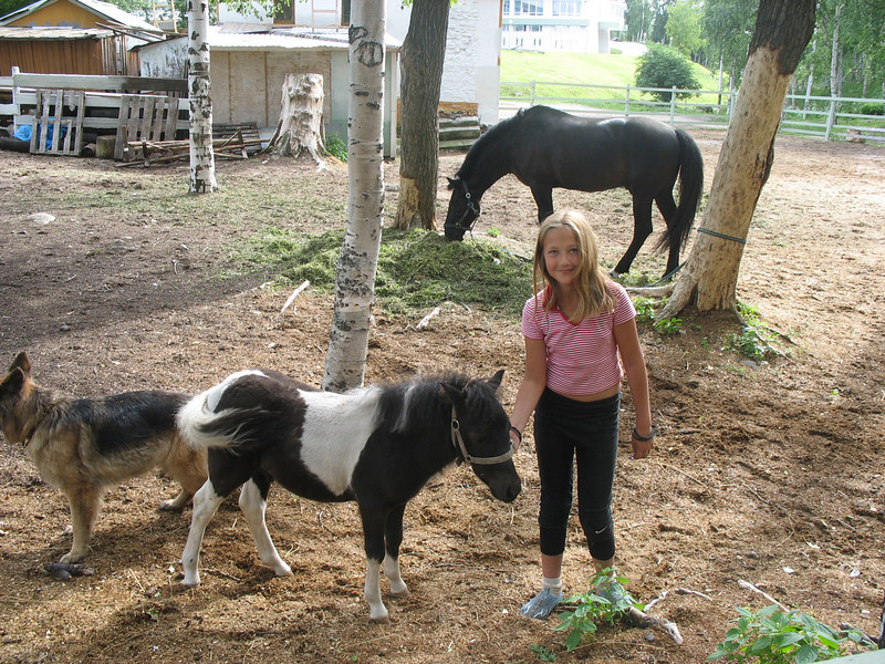 The Karelia Pony Club.