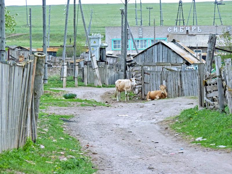 Salt Lake Village - Gaidar's village today.