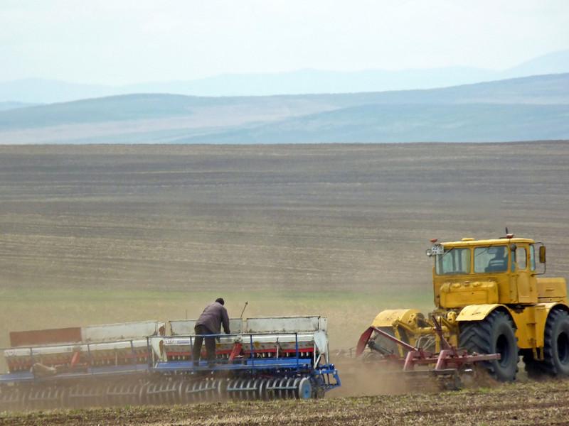 Working the fields.