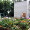 The garden at the Nadezhda orphanage.