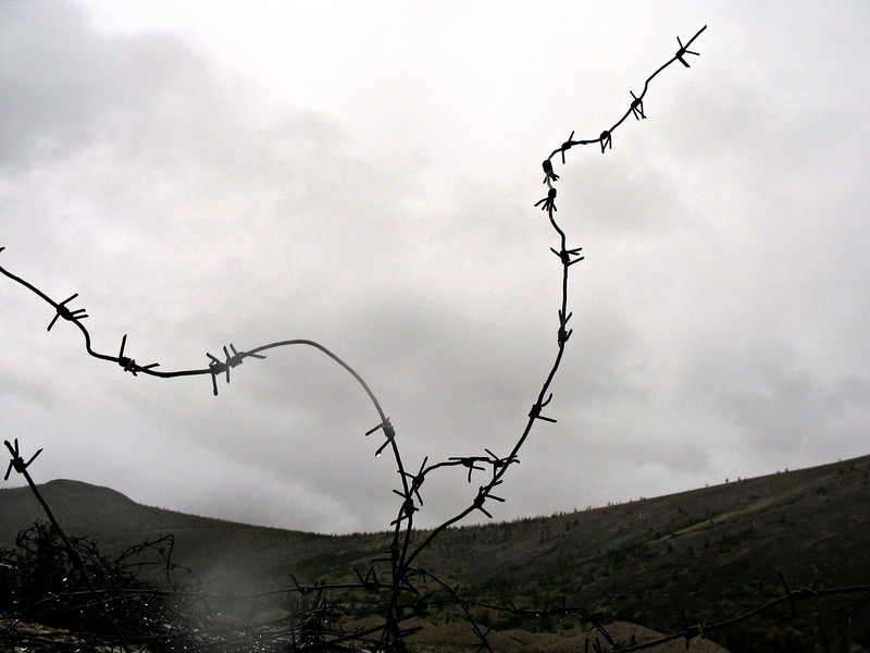 Barbed wire. Gulag camp Heta.