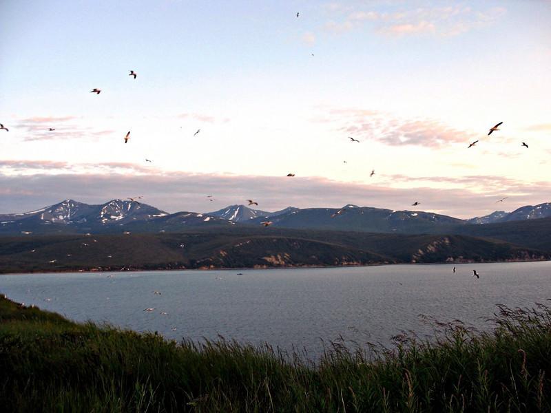 View from Umara Island.