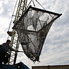 Empty net.