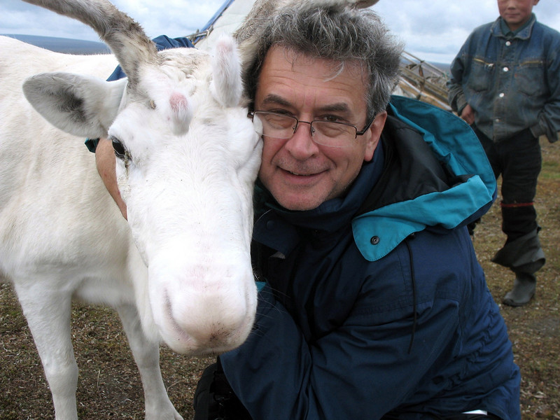 This young, white reindeer was quite tame & friendly.