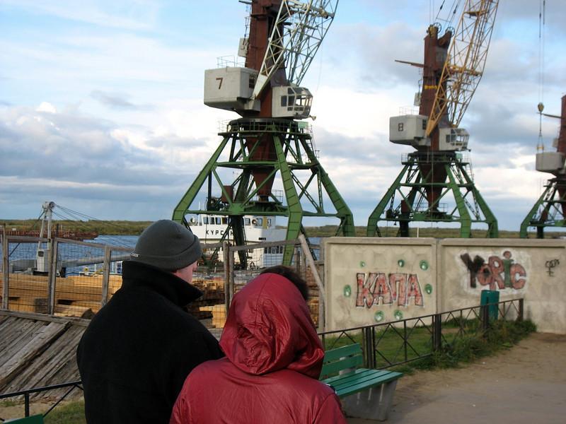 Cranes on the Pechora River. Nar'yan-Mar, Russia.