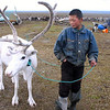 Yamp-to Nenets boy with white reindeer on the tundra.