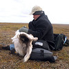After spending the day with the Yamp-to Nenets clan, it's time for RT correspondent, Sean Thomas, to write his report.