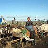 Yamp-to Nenets with their reindeer & sled on the tundra.