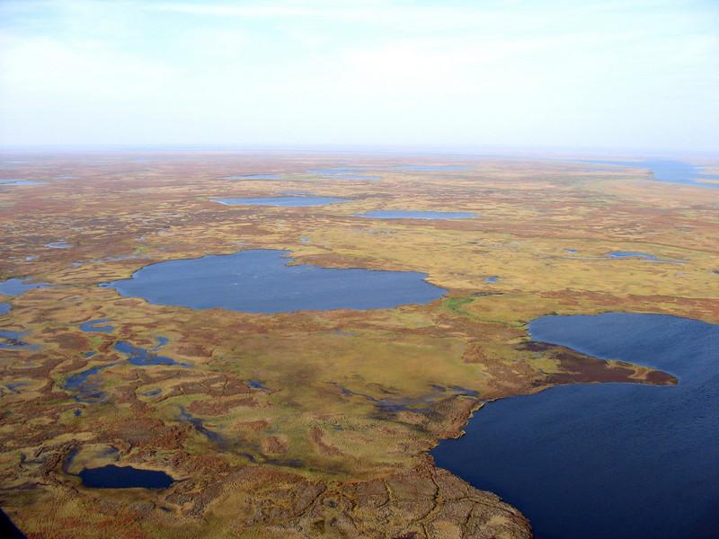 Tundra lakes.
