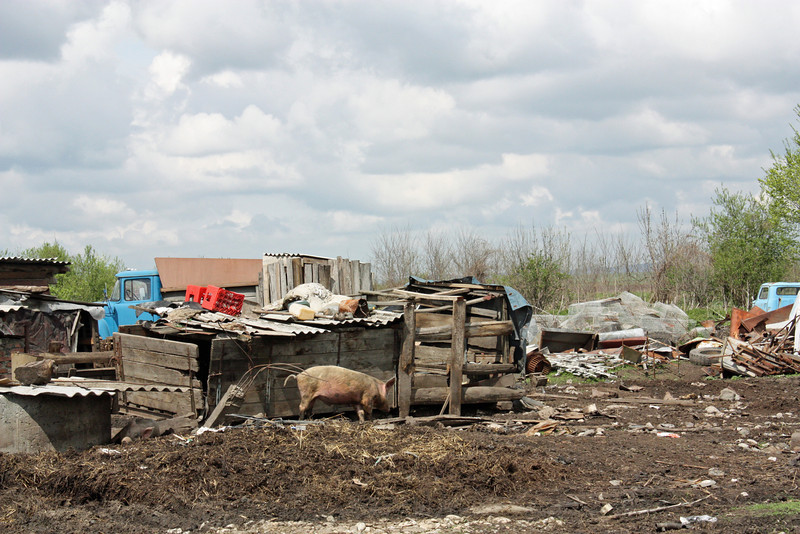 Routing the garbage at Kambileevskoe refugee camp