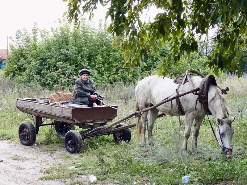 село Куракино,  деревенская жительница была горда тем, что я сфотографировал её лошадь.