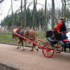 Some newlyweds make the rounds of the estate by carriage.