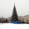 Vladimir's New Year tree.