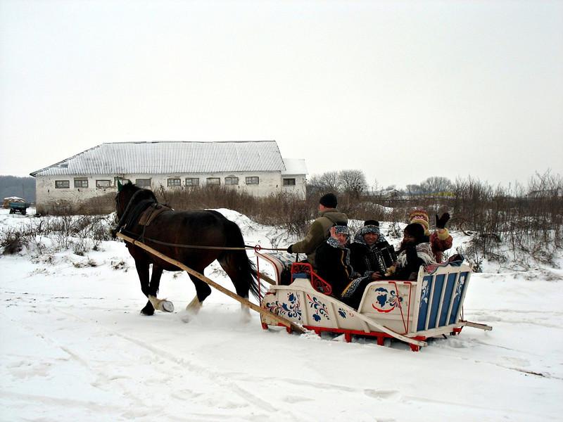 Vladimir Heavy Draft horse pulling a sleigh full of people.