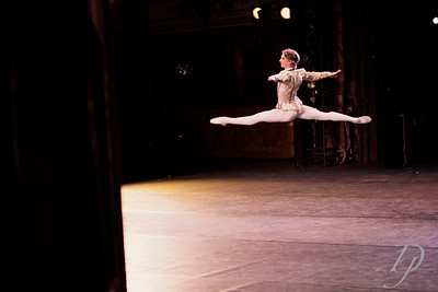 The Sleeping Beauty Grand Pas De Deux - Vadim Muntagirov