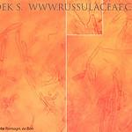 Russula cicatricata - plávka hnedoolivová