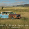 1956 nash ambassador, hwy. 54, nw texas. like many put-to-pasture abandoned junkers, it spoke to me.