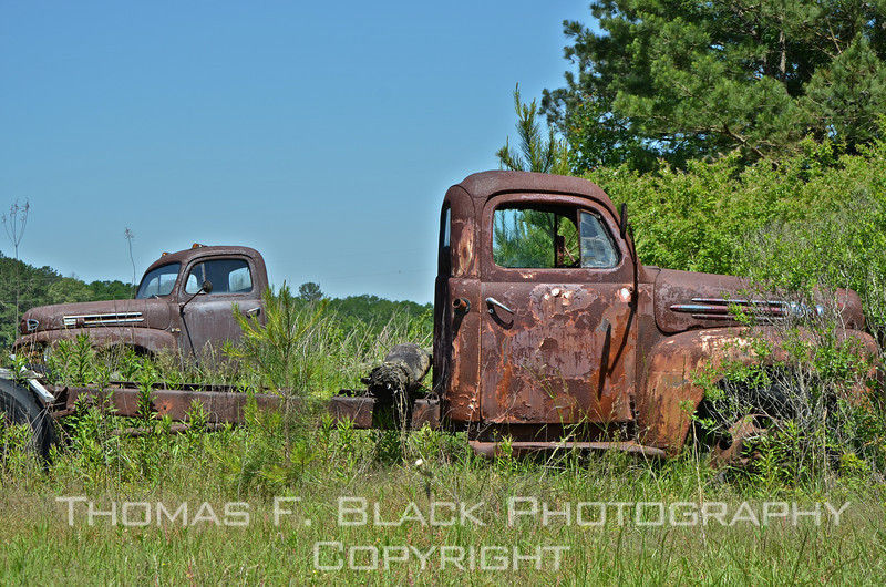 This and 14 frames following, pair of discarded 1950s Ford trucks parked close to each other, Hwy. 16, east of Edinburg, MS (near Philadelphia).  [UFP050711]