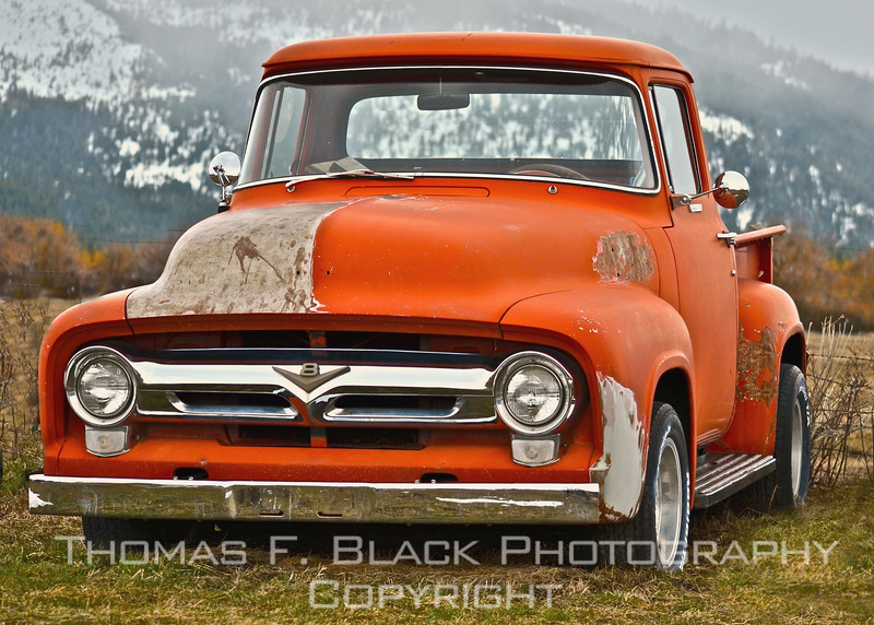 1956 Ford F-100 pickup against backdrop of snow-bedecked mountains, Sierraville, CA (Sierra County). [UFP031311]