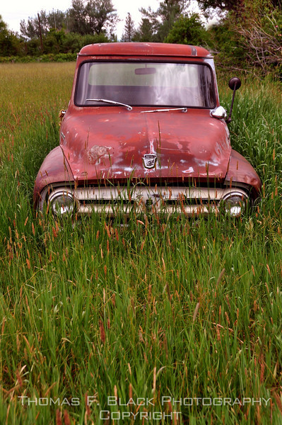 This and seven frames following, abandoned 1950s Ford 100 pickup, Sierraville, CA. [UFP062510]
